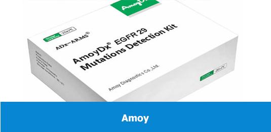 Amoy-img-535